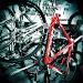 bikes-300